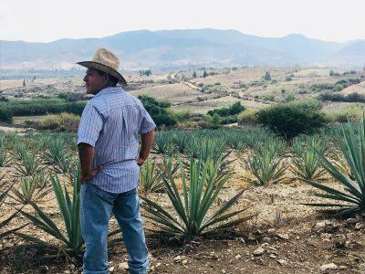 Juan Hernández Méndez: Master Mezcalero